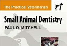 Small Animal Dentistry The Practical Veterinarian PDF