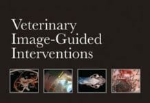 veterinary image-guided interventions pdf