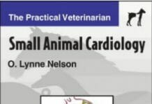 Small Animal Cardiology: The Practical Veterinarian PDF