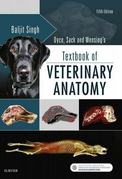 - Dyce, Sack And Wensing's Textbook Of Veterinary Anatomy, 5th Edition PDF  Vet EBooks